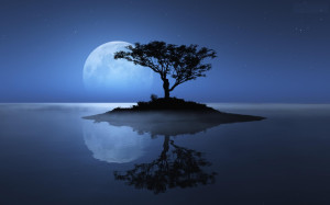 blue-moon-wallpapers-full-hd-wallpaper-3d-abstract-picture-moon-hd-wallpaper